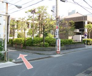 鎌倉の動物病院アクセス経路